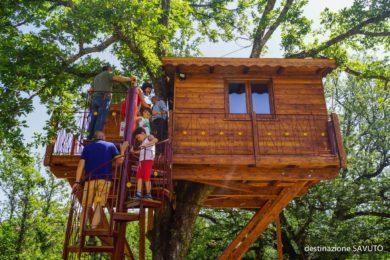 Casa sull'albero: un sogno realizzabile!