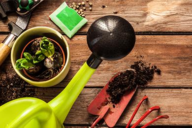 Giardinaggio che Passione: i consigli per un giardino perfetto